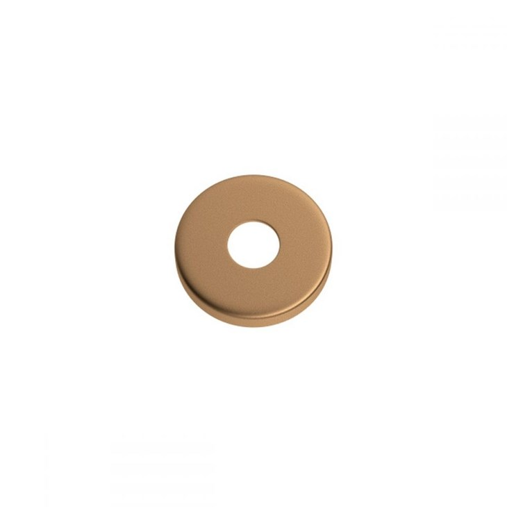 Parafuso de Vaso/Bidê para Fixação Gold Matte Deca