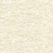 Piso Cerâmico 53X53CM Bold Coliseu PEI4 Brilhante Fioranno